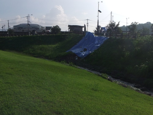 2012_0729川清掃 7月29日0010.JPG